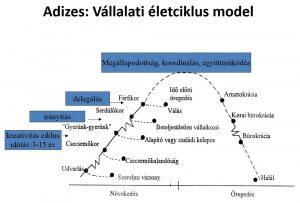 adizes féle vállalati fejlődési fázis modell